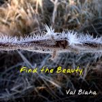 Find the Beauty